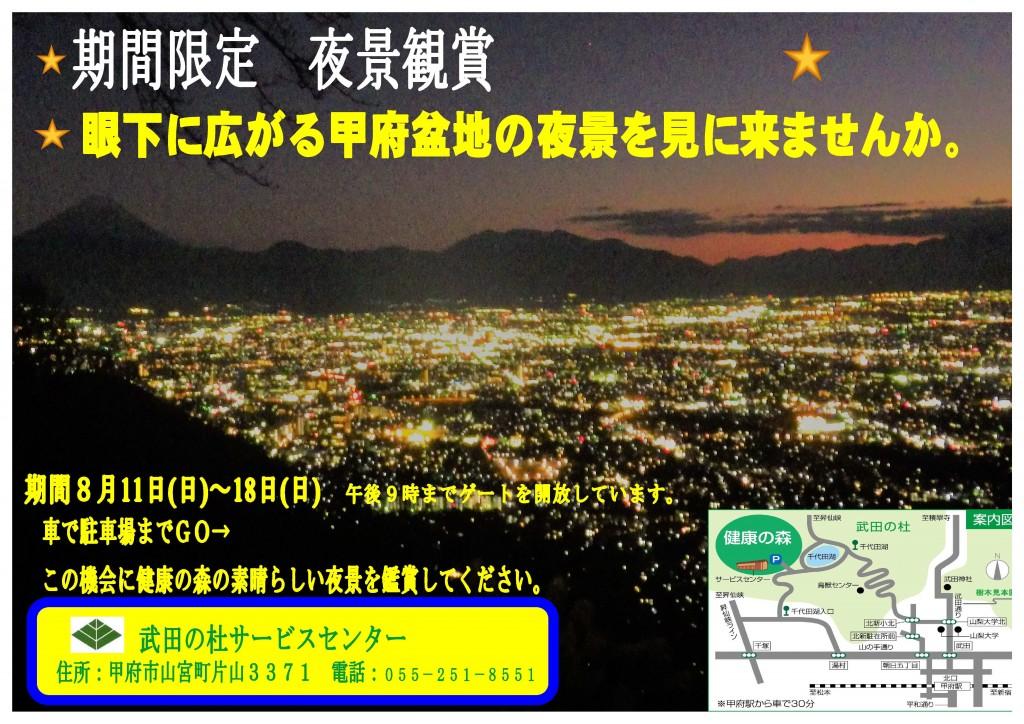 夜景鑑賞ポスター-3