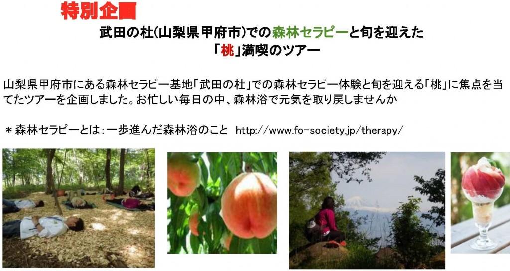 20170729武田の杜『桃』満喫ツアー31-1題