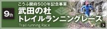 bnr_run2017
