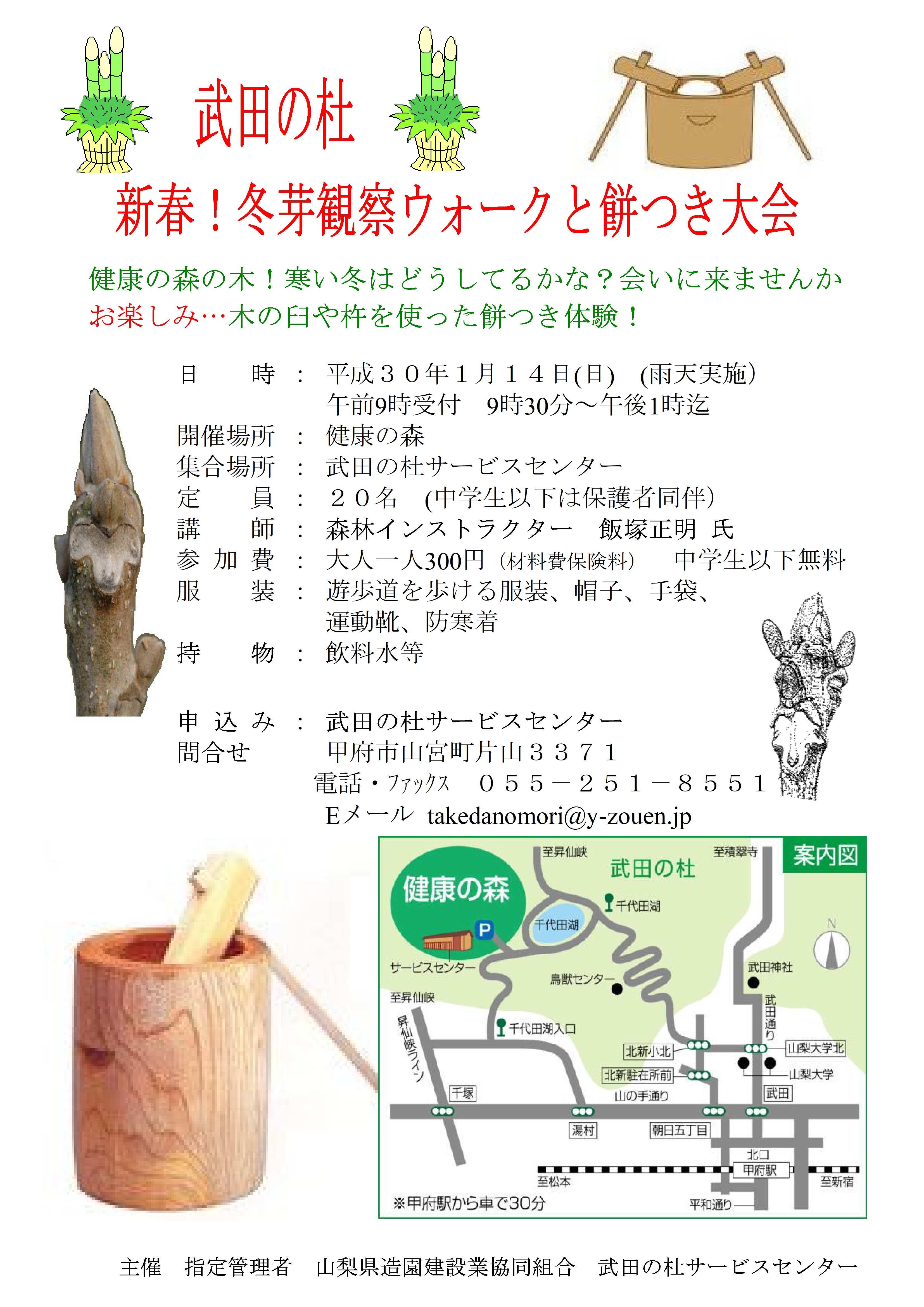新春冬芽観察ウォークと餅-2